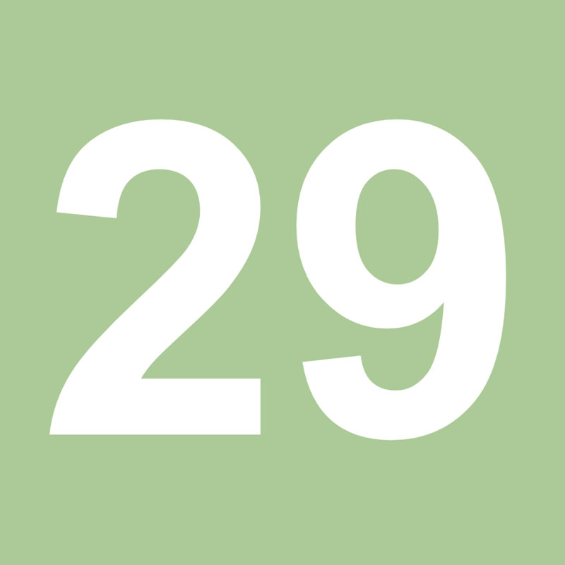 Número 29