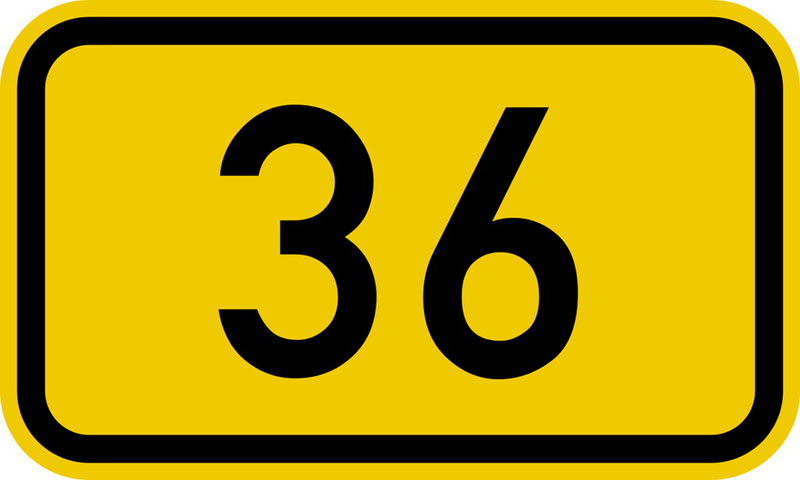 Número 36